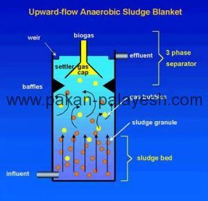 راکتور بی هوازی UASB