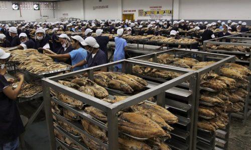 تصفیه فاضلاب صنایع فرآوری محصولات دریایی